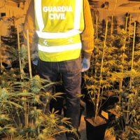 El enganche ilegal de una plantación de marihuana provoca un incendio en Las Gabias (Granada)