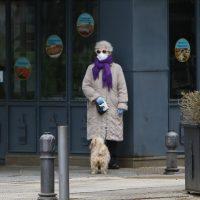 La capital limita el paseo de los perros