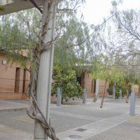Ningún ayuntamiento ha pedido por ahora usar el cementerio de Granada para sus víctimas de coronavirus