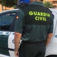 Investigado por golpear a su perro con un palo en la cabeza y abandonarlo en Beas de Granada